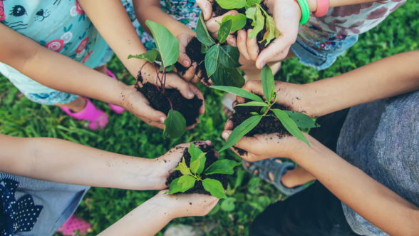 sustainable practices at edge early learning