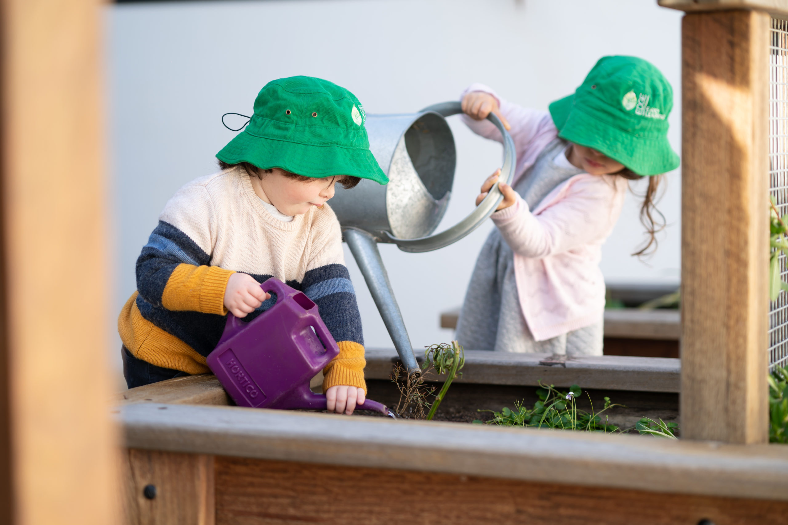teaching responsibility with plants