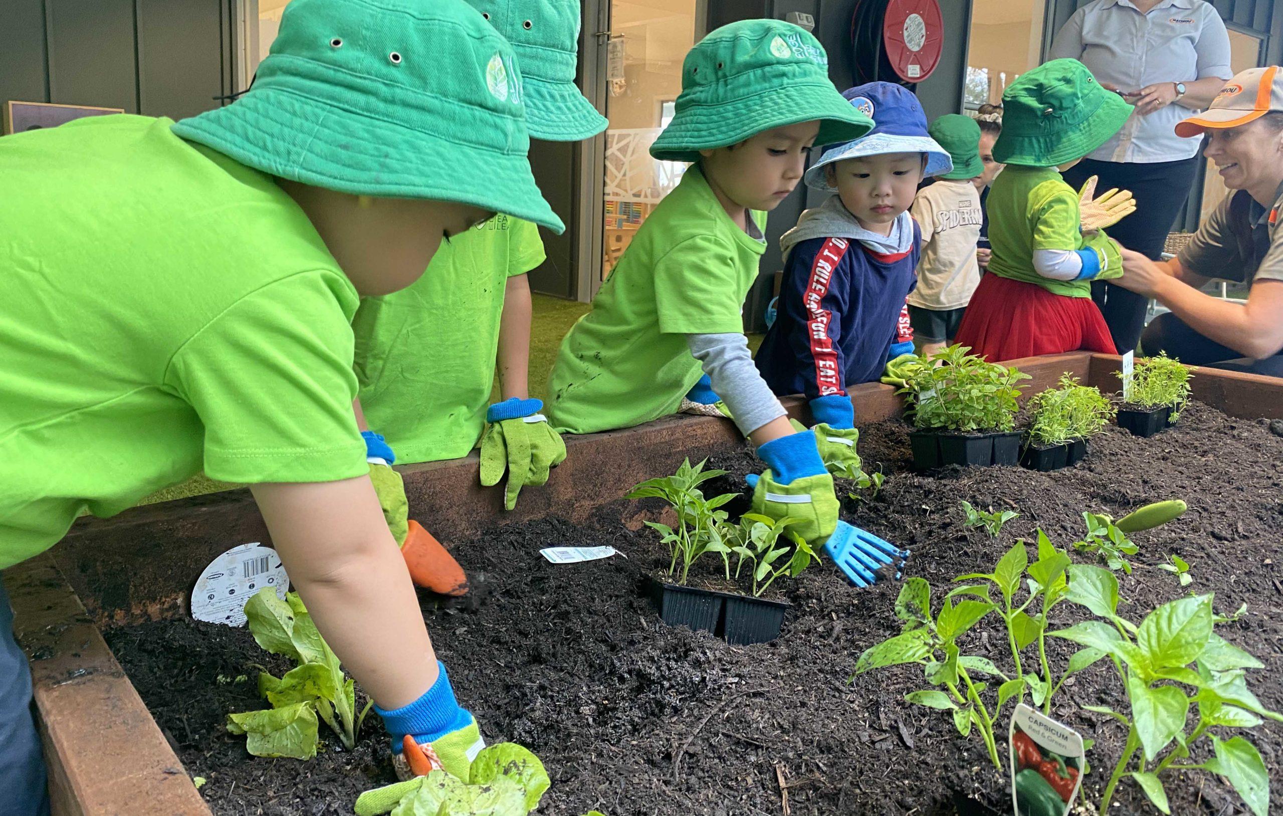 Edge Early Learning Kelvin Grove Children Gardening