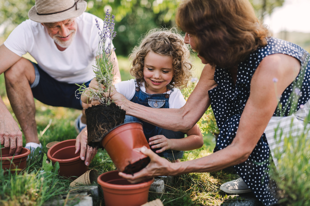 Girl gardening with grandparents
