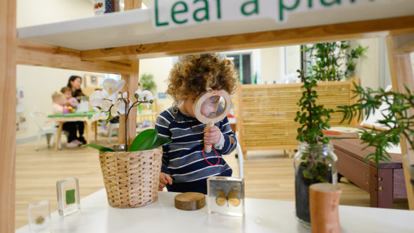 Boy looking through magnifying glass at butterfly