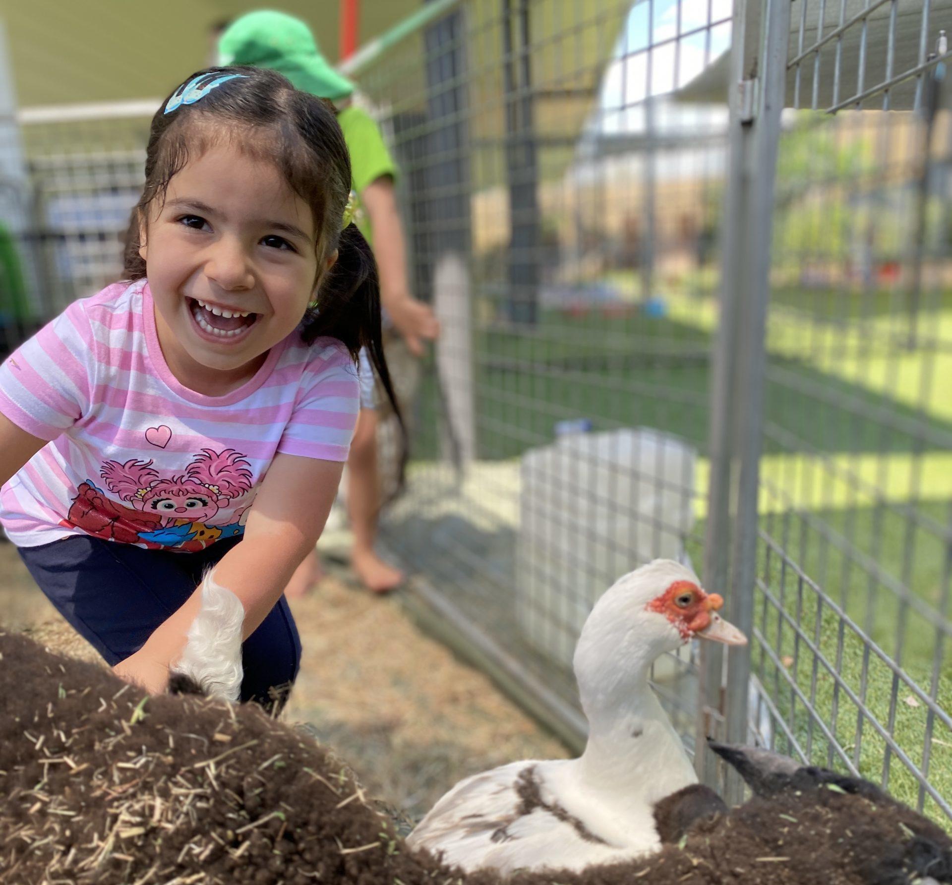 little girl in petting zoo